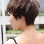 Back View of Layered Pixie Cut - Short Pixie Cut for 2014