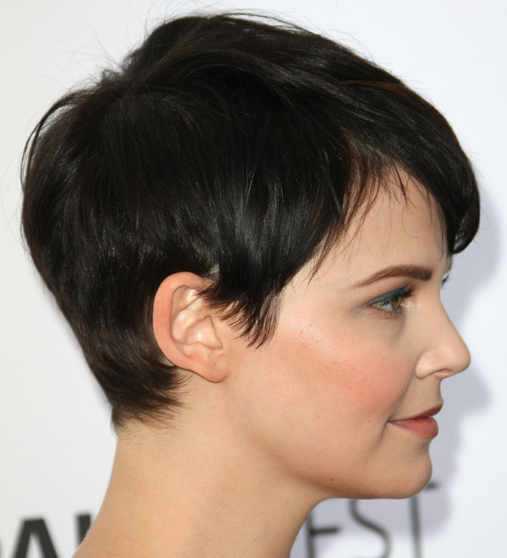 Pixie Cuts Back View http://hairstylesweekly.com/pixie-haircut/side-view-of-pixie-haircut/
