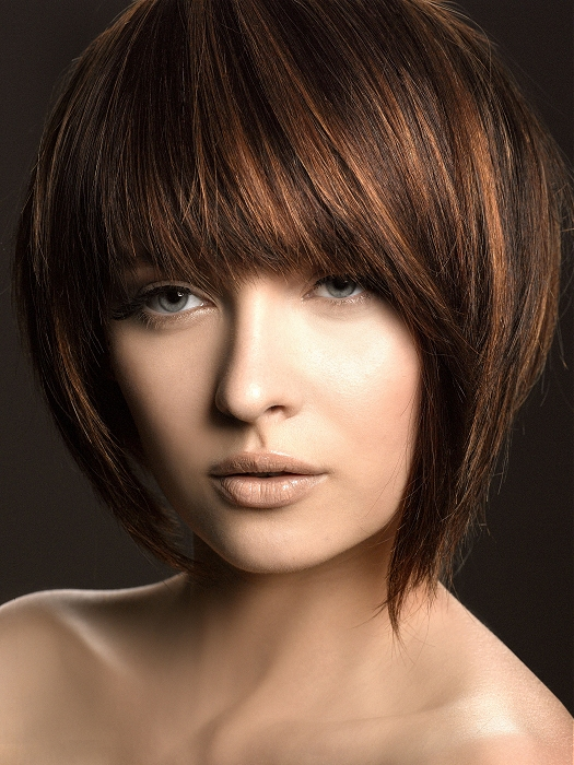 Dark Brown Hair with Caramel Highlights Bob