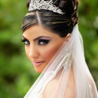 Wedding updos with veils birdcage style