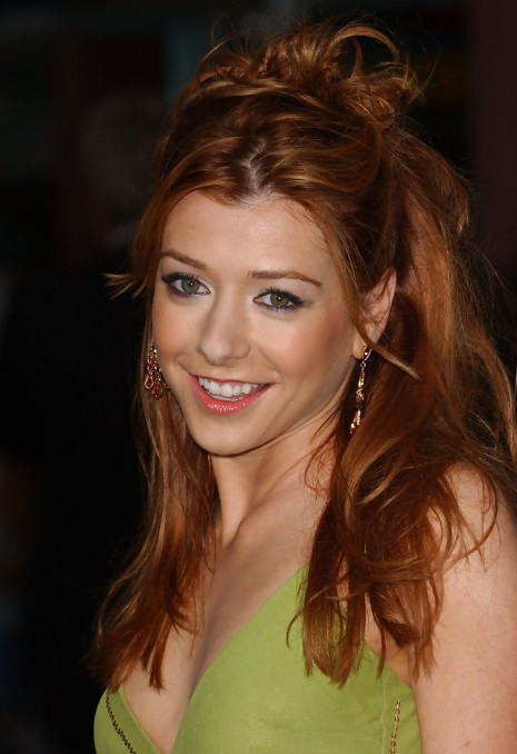 Alyson Hannigan Layered Brown Half Up Half Down Hairstyle