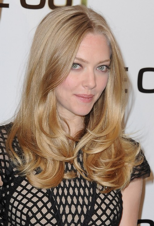 Amanda Seyfried Long Hairstyle - Middle Part Layered Hairstyle