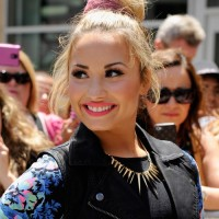 Casual Bun Updo Hair Styles Demi Lovato Pink Bun Updo 2013