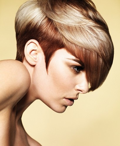 Hair colors 2013 رنگ موی سال 2013