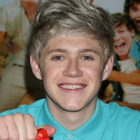 Niall Horan Latest Hairstyle for Guys