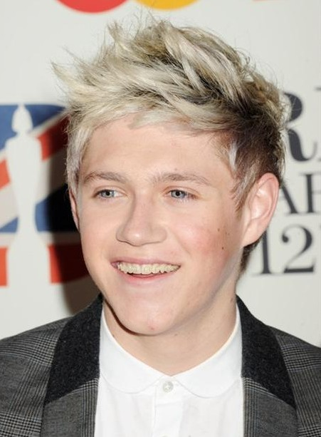 Niall Horan hairstyle with razored ends
