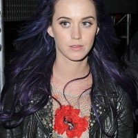 Purple Hairstyles for Long Hair