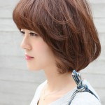Short Asian Brown Haircut