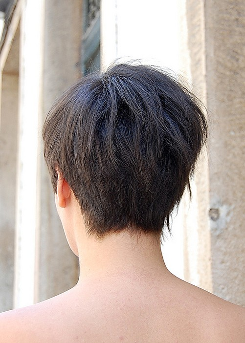 Stupendous Back View Of Asymmetric Bob Haircut Hairstyles Weekly Hairstyles For Women Draintrainus