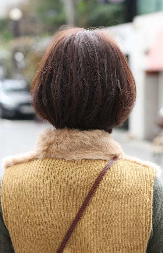 Pleasing Back View Of Cute Asian Bob Hairstyle Hairstyles Weekly Short Hairstyles Gunalazisus
