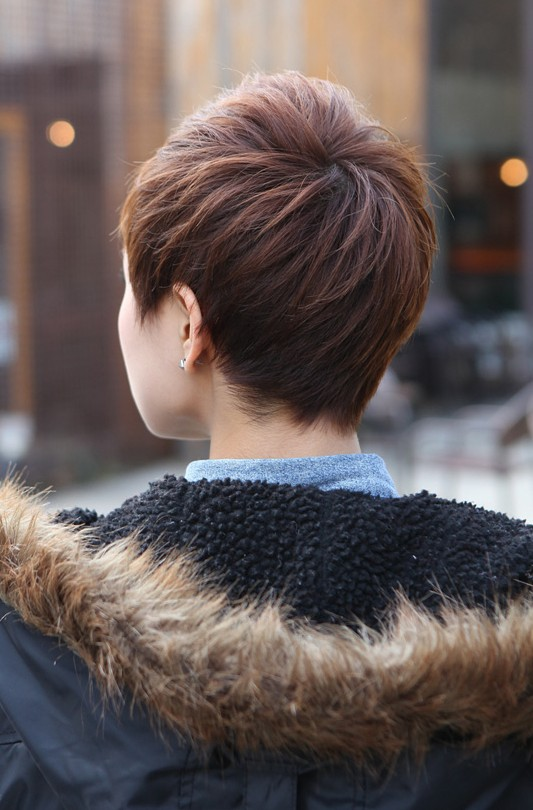Back View of Short Layered Boyish Cut - 2013 Pixie Cut