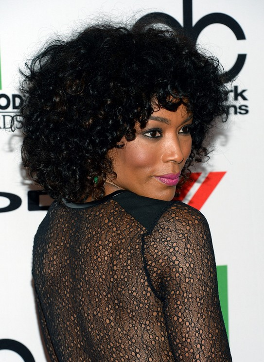 Miraculous Angela Bassett Black Curly Hairstyle For 2014 Hairstyles Weekly Schematic Wiring Diagrams Amerangerunnerswayorg