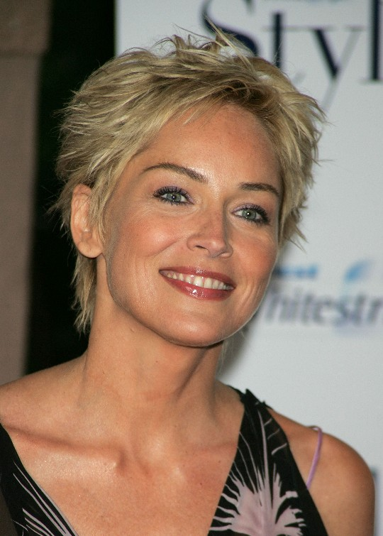 Short Pixie Cut For Women Over 50 Sharon Stone Hair Style