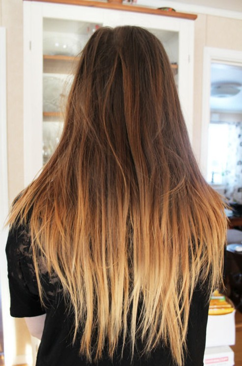 Brown to Light Brown Ombre Hair