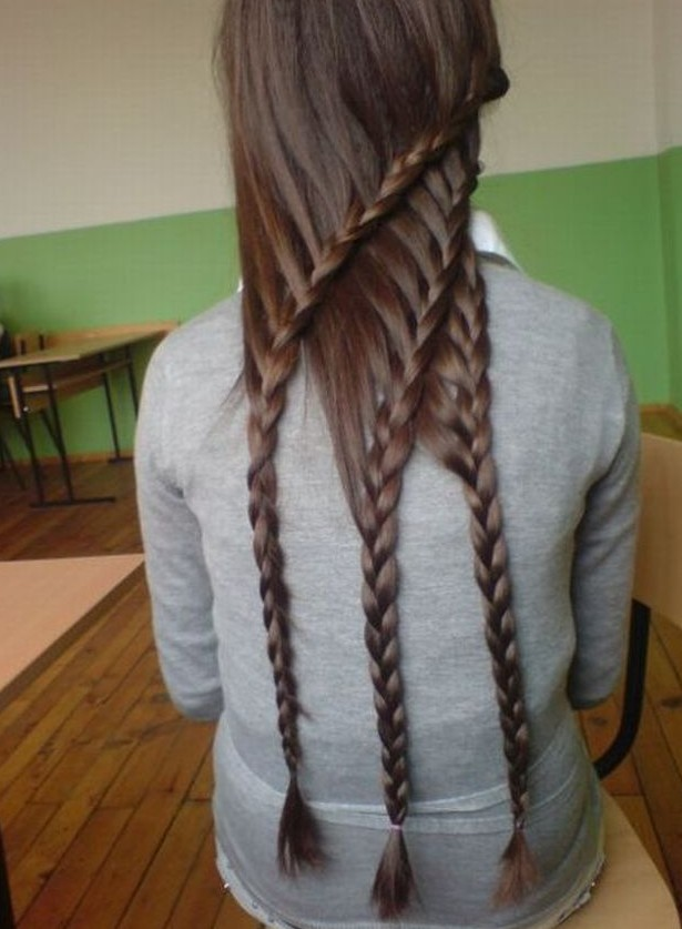 Picture of back view of cool triple layered braids for girls tumblr
