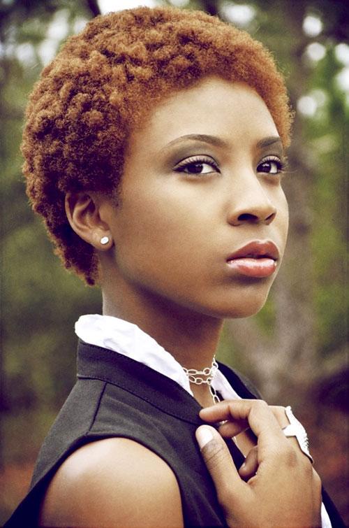 Stupendous 25 Beautiful African American Short Haircuts Hairstyles For Short Hairstyles For Black Women Fulllsitofus