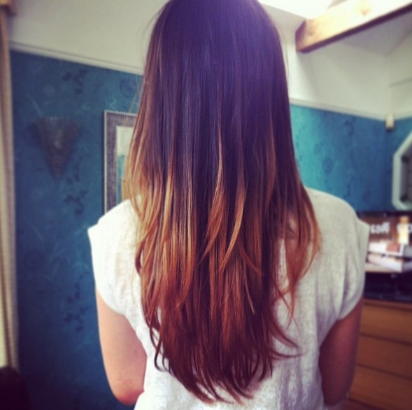 Back View of Long Dark to Blonde Straight Ombre Hair for Girls