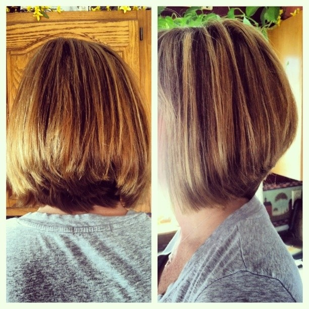 Simple Natural Look - The Layered Bob Haircut for Thick Hair ...