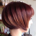 Short Chin Length Dark Red Bob Hairstyle