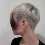 Stylish Short Smooth Hairstyle for Fine Hair
