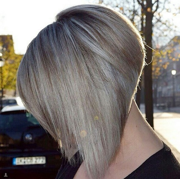 Wondrous 25 Super Chic Inverted Bob Hairstyles Hairstyles Weekly Hairstyles For Women Draintrainus