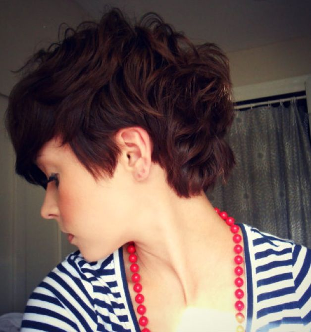 Fine 19 Cute Wavy Amp Curly Pixie Cuts We Love Pixie Haircuts For Short Hairstyles For Men Maxibearus