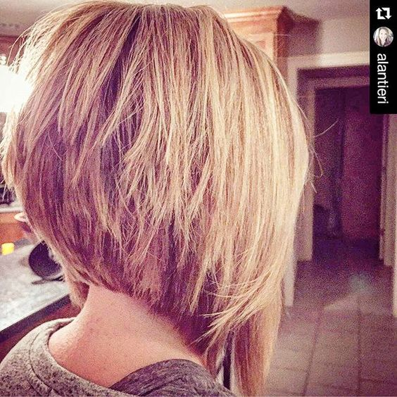 2016 Layered Inverted Bob Hairstyles furthermore Michelle Williams ...